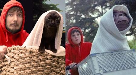 Brytyjczyk odtwarza sceny z kultowych filmów ze swoimi kotami!